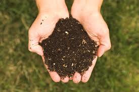 A komposztálás segítségével kerülheted a vegyszereket