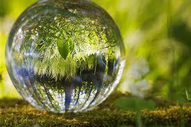 Éljünk a környezettudatosság jegyében!